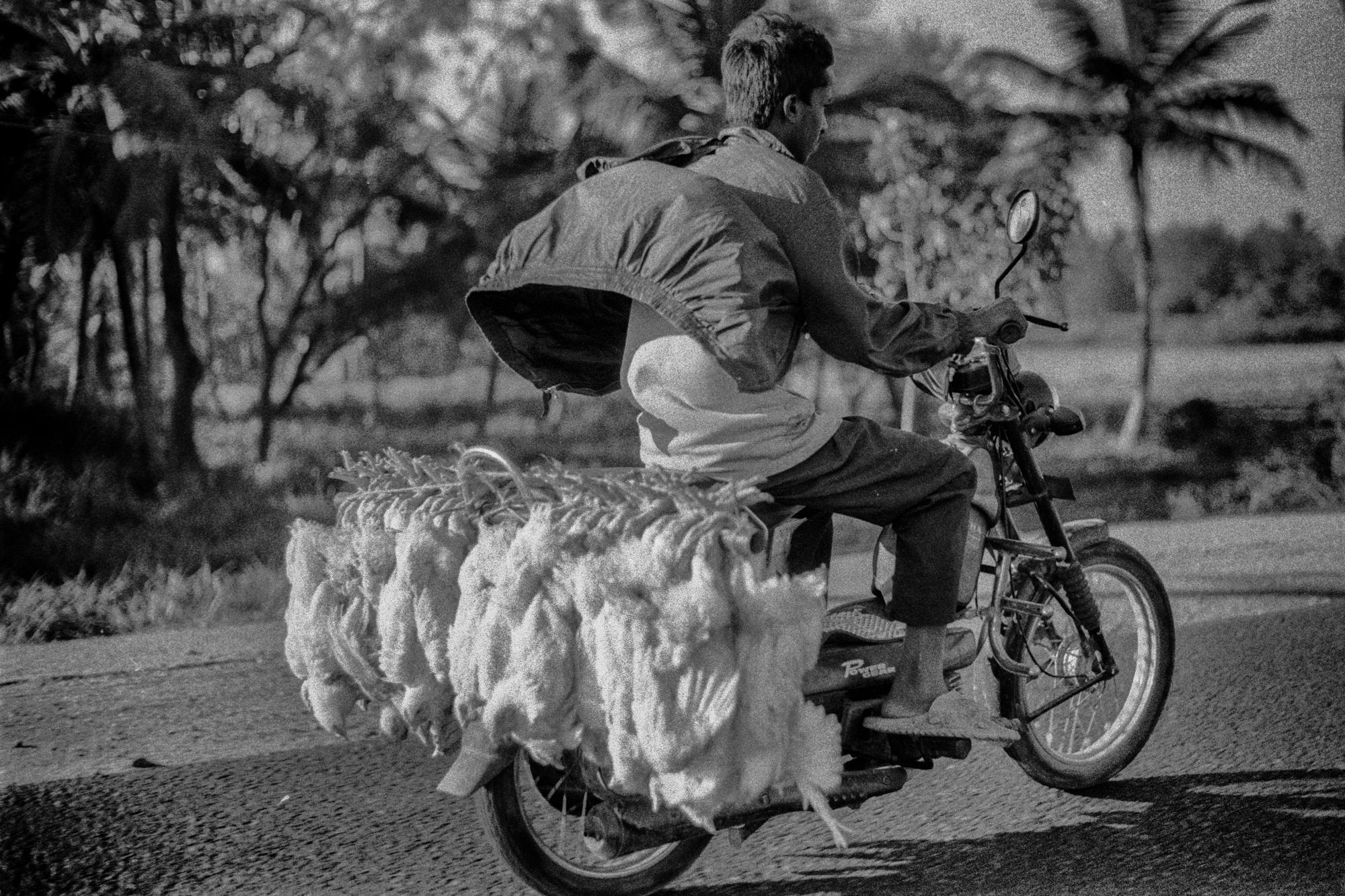 India, February 205
